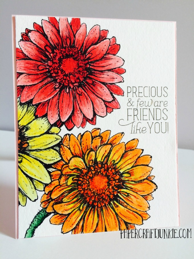 Power Poppy Gerbera Daisies - This digital stamp is the perfect way to tell someone how much they mean to you!